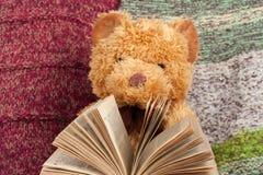 tillbaka skola till stucken filt Nallebjörn som läser en öppen inbunden bokbok Kopiera utrymme för text Royaltyfri Fotografi