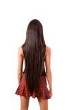 tillbaka slankt brunettkvinnlighår long Fotografering för Bildbyråer