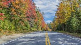 Tillbaka väg Autumn Scenery Arkivfoto