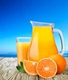 Tillbringare eller kanna med highball av orange fruktsaft med apelsiner Royaltyfria Bilder