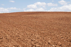 Tilled. Agricultural  field with blue sky and white clouds Stock Photo