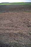 Tilled earth on field. In agricultural landscape Stock Photo