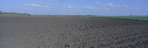 Tilled Farm Field Stock Photo