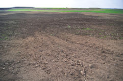 Tilled Field. A field ready for planting Royalty Free Stock Images