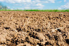 Tilled field Stock Photos