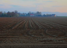 Plowed field. In sunset light. Horizontal and vertical lines Stock Image