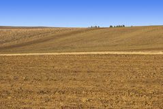 Tilled Field in Winter. Tilled dirt field in the Colorado prairie in winter Royalty Free Stock Images