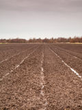 Tilled field in winter. Bare wet brown soil tilled field in the winter Stock Photos