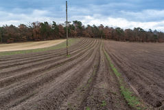 Tilled Fields. Farm Fields Ready For Planting Royalty Free Stock Photo