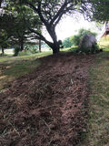 Tilled flower bed in backyard. Flower bed tilled for planting under tree in grassy backyard Royalty Free Stock Photos