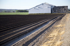 Tilled Soil on Farm Stock Image
