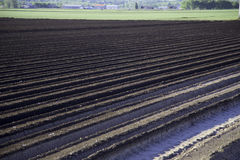 Tilled Soil on Farm Stock Photography