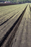 Tilled Soil on Farm Royalty Free Stock Photos