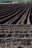 Tilled Soil on Farm Stock Photo