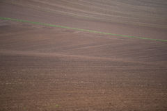 Tilled soil Royalty Free Stock Photography