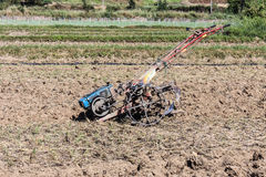 Tiller tractor in rice field Stock Photo