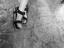tillfällig sko på polerad betong Arkivbild