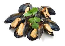 tillgängligt arbete för serie för mussla för clippingmatlagningingrediens tillgängligt för clippingarbete Royaltyfri Foto