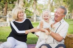 Tillgiven sondotter och morföräldrar som spelar på parkera arkivfoto
