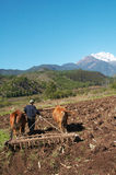 Tilling the field at foot of snow mountain Stock Photography