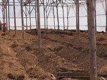 Tilling for prepare soil cultivation. Royalty Free Stock Photography