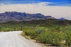 Tillotson Peak in Organ Pipe Cactus National Monument Royalty Free Stock Photo