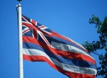 Tillståndsflagga av Hawaii Arkivbild