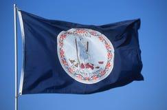 Tillståndsflagga av Virginia Royaltyfria Bilder