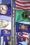 Tillståndsflaggor av Amerika Arkivfoton