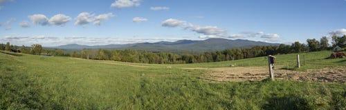 Tillståndsskog Vermont för CC Putnam Arkivbilder