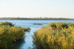 Tillströmningnedgångar i floden Fotografering för Bildbyråer