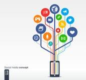 Tillväxtträd med det sociala massmedianätverket för mobiltelefon Royaltyfri Foto