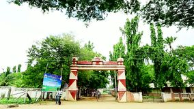 Tilt Down Top Tree to Indian College Gate Entrance. Tilt Down Top Tree to Indian College Gate stock footage