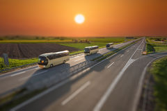 Tilt shift image of fast travel buses on the highway at sunset. Modern golden buses driving in blurred motion on the freeway at beautiful sunset in tilt shift Royalty Free Stock Images