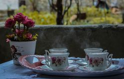 Tilt-shift Photography White-and-green Floral Teacup Set royalty free stock photography