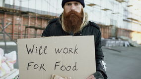 Tilt up of portrait of young homeless man with cardboard looking at camera and wants to work for food standing near stock video footage