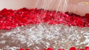 Tilt up shot of red rose petals in bathtub with running shower, Hotel Amar Villas, Agra, Uttar Pradesh, India stock footage
