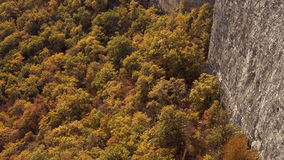 Tilt up from yellow autumn forest to reveal rocky mountains. Crimean mountains in autumn. Canyon with golden autumn. Trees. Alimova Balka, Crimea. 4k UHD stock video footage