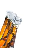 Tilted bottle of fresh beer with ice on white Royalty Free Stock Photography