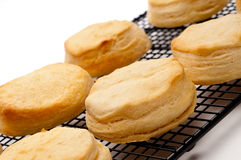 Tilted close up of fresh baked biscuits Stock Photography