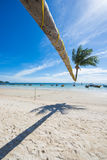 Tilted coconut tree landmark of Tao island in Thailand Stock Photo