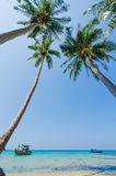 Tilted coconut trees by the beach with the boat and blue sky Stock Images