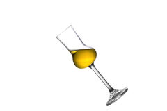 Tilted Grappa Royalty Free Stock Photos