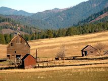 Tilting Barns. A very steep hillside with tilting barns.  Near Ellensburg, WA Stock Photos