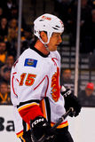 Tim Jackman Calgary Flames Stock Photography