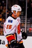 Tim Jackman Calgary Flames Stock Photography