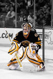 Tim Thomas Boston Bruins Royalty Free Stock Photography