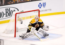Tim Thomas Boston Bruins Royalty Free Stock Images
