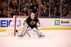 Tim Thomas Boston Bruins Royalty Free Stock Photo