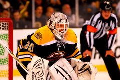 Tim Thomas Boston Bruins Photographie stock